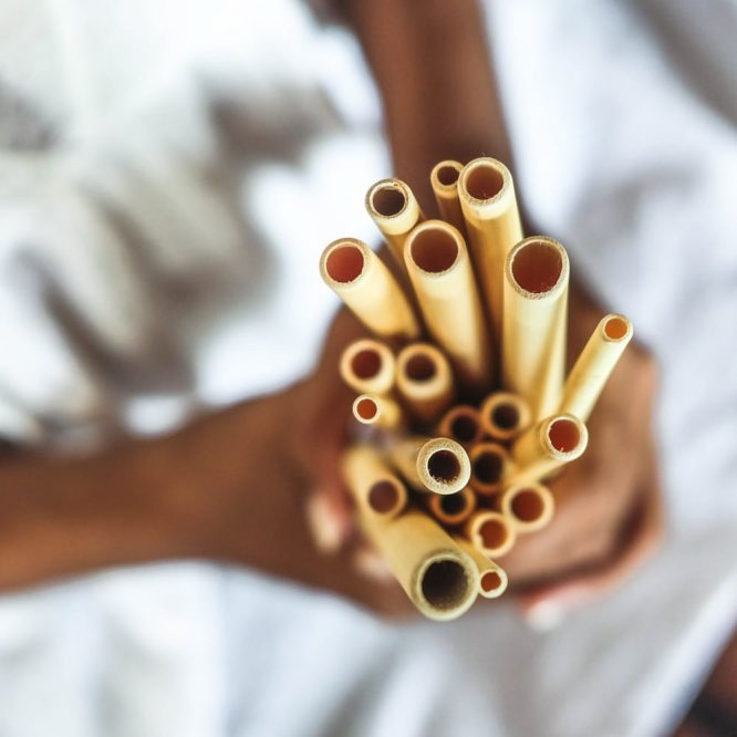Paille réutilisable en bambou